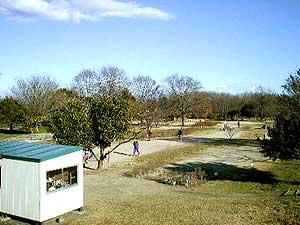 太田市利根グラウンドゴルフ場