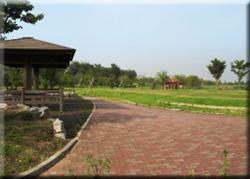 天神池公園