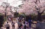 桐生が岡公園(動物園・遊園地)