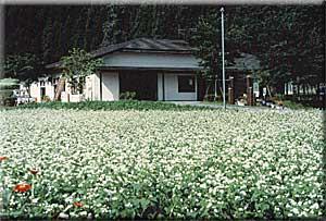 農林漁家高齢者センター