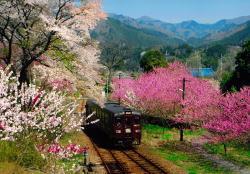 わたらせ渓谷鐵道神戸駅 花桃まつり