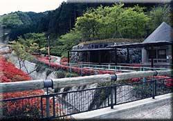 小平の里鍾乳洞公園