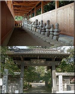 国指定史跡 新田荘遺跡 円福寺境内