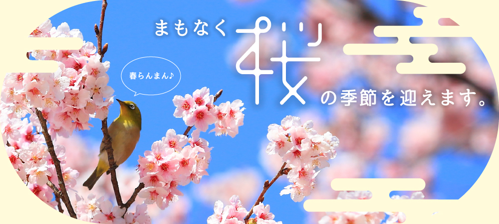 sakura_slide