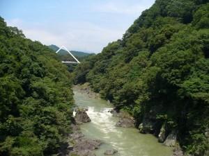 高津戸峡・新緑